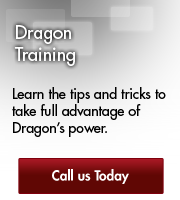 Dragon Training Overview