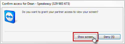 Speakeasy Solutions TeamViewer Support Grant Access